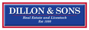 dillon-and-sons
